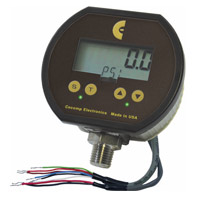 Pressure gauge with alarm switches and analog output